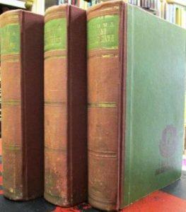 VIKONT DE BRAŽELON - ALEKSANDAR DIMA u 3 knjige